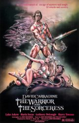 The Warrior and the Sorceress (1984)